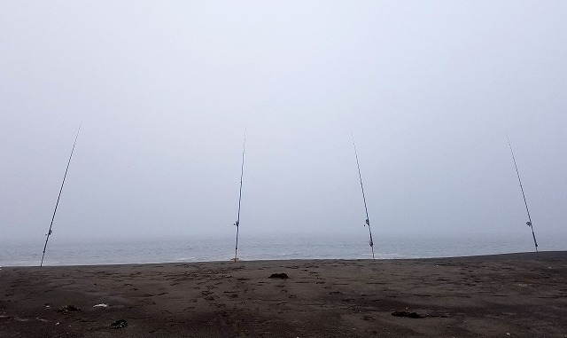 河口に並ぶ竿アキアジ釣りの竿