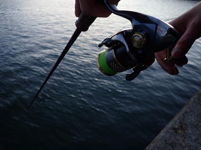 釧路でアキアジ釣り遠征!その①~人で溢れかえる釣り場で果たしてサケは?