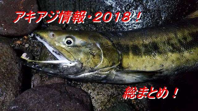 【2018年】鮭釣り(アキアジ)シーズン終了宣言!今年の釣りを振り返ってみた。