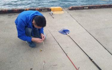 函館港内にニシン釣り!のはずが不発でクリガニに逃げる。