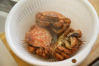 クリガニの食べ方・レシピ!味や下処理の仕方まで詳しく解説。