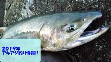 【2019】鮭(アキアジ)釣り情報はここでチェック!【18日new!随時更新】