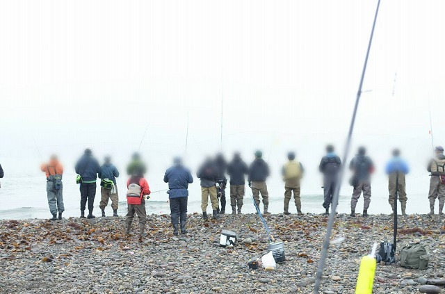 情報 北海道 鮭 釣り