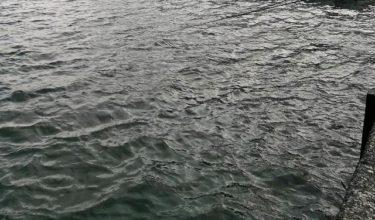 道南日本海鮭釣り遠征!そろそろ終焉間近?