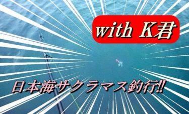 日本海サクラマス釣行!K君登場でアレの入れ食いを楽しみました