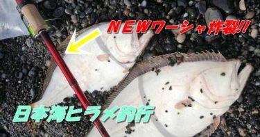 日本海ヒラメ釣行!おnewなワーシャで連続ヒット!!