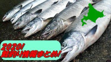 【2020】鮭釣り(アキアジ)最新情報はここでチェック!【12日new!随時更新】
