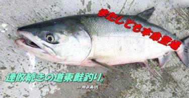 道東鮭(アキアジ)釣りへ!カラフトに本命も登場したが…。