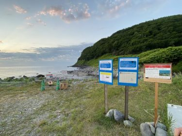 【速報】鮭・カラフトマス聖地・幌別川河口が一時立ち入り禁止に!