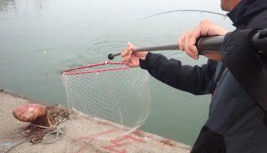 道東鮭釣り遠征⑤!名物おじさん登場!ホームポイントに懸けた結果は!?