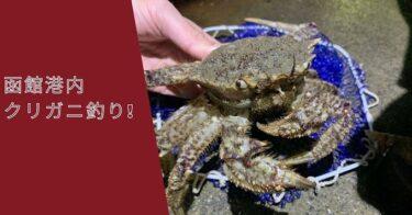 目指せ高級食材!?函館港内でクリガニ釣りを楽しむ。