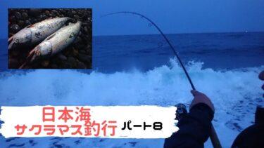 日本海サクラマス釣行!お隣にナナマル目前現る!そんな中、筆者らは!?