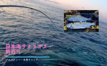 日本海サクラマス釣行!Xデーの翌日は○○!?全員安打達成。