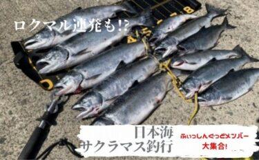 日本海サクラマス釣行!11本捕獲!ロクマル連発のXデー!?