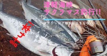 津軽海峡サクラマス釣行!!朝夕で4本キャッチ!変わらずのダイソー無双。