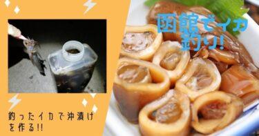 函館近郊イカ釣り!念願の沖漬けを作って日本酒を飲んだら最高でした。