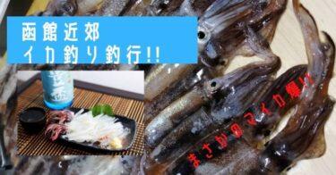 函館近郊ヤリイカ釣り!のはずがマイカ爆発!!絶好の夜釣りシーズン到来。