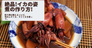 【ムギイカ・ヤリイカで】イカの姿煮の作り方!やわらか絶品!【釣り人飯】