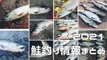 【2021年】鮭釣り情報はここでチェック!!道内の情報を随時更新!【27日new】