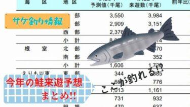 【2021鮭釣り】今年の秋サケ来遊予想は!?過去最低になる可能性も!?