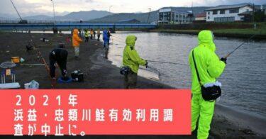 【2021】浜益川・忠類川鮭有効利用調査が今年も中止決定!!【鮭釣り】