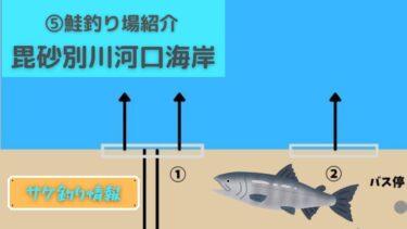⑤石狩市・毘砂別川河口海岸【鮭(アキアジ)釣り・ポイント紹介】