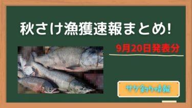 【鮭釣り】秋さけ漁獲速報更新。中旬までに好調だった釣り場は?