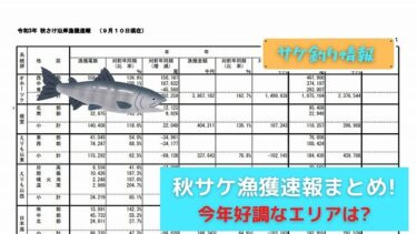 【鮭釣り師必見!?】秋さけ漁獲速報が発表!!序盤に釣れるのはココの地域!?